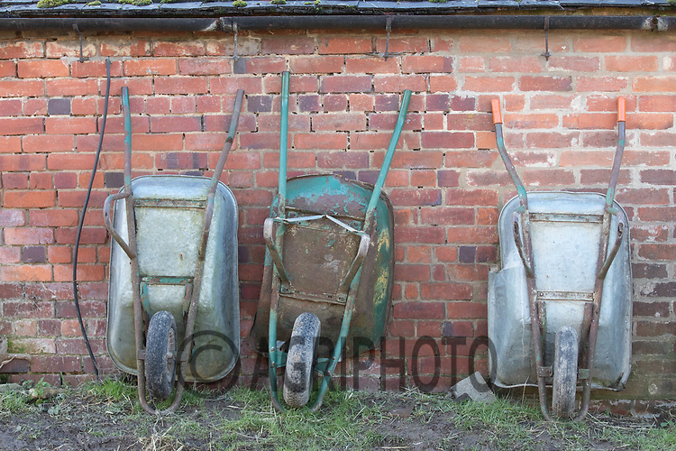 18-2-2021 Wheel barrows loaned up against a shed wall in a farmyard<br /> ©Tim Scrivener Photographer 07850 303986<br />      ....Covering Agriculture In The UK....
