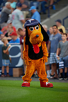 Reading Fightin Phils mascot Blooper the Hound Dog before an Eastern League game against the Trenton Thunder on August 16, 2019 at FirstEnergy Stadium in Reading, Pennsylvania.  Trenton defeated Reading 7-5.  (Mike Janes/Four Seam Images)