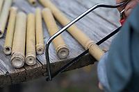 Wildbienen-Nisthilfe aus Bambus, Bambusstange, Bambusstangen, Bambus-Nisthilfe, Bambusstab, Bambusstäbe. Schritt 1: Baumbusstäbe werden in etwa 20 cm lange Stücke gesägt. Der Schnitt erfolgt knapp hinter einer Halmverdickung, weil dort die Bambusstangen nicht hohl sind - so hat jedes Stöckchen ein offenes und ein geschlossenes Ende. Wildbienen-Nisthilfen, Wildbienen-Nisthilfe selbermachen, selber machen, Wildbienenhotel, Insektenhotel, Wildbienen-Hotel, Insekten-Hotel