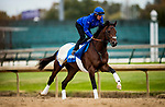 October 25, 2018 : Thunder Snow gallops in preparations for the Breeders' Cup Classic at Churchill Downs on October 25, 2018 in Louisville, Kentucky. Evers/ESW/CSM