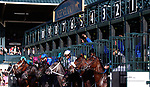 """LEXINGTON, KY - October 6, 2017.  Start of the 66th running of the Darley Alcibiades.  #9 Heavenly Love and jockey Julien Leparoux win the 66th running of The Darley Alcibiades Grade 1 $400,000 """"Win and You're In Breeders' Cup Juvenile Fillies Division"""" for owner Debby Oxley and trainer Mark Casse.  Lexington, Kentucky. (Photo by Candice Chavez/Eclipse Sportswire/Getty Images)"""