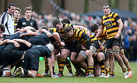 Saturday 18th February 2017   CCB vs RBAI<br /> <br /> Scrum during the Ulster Schools' Cup Quarter Final clash between Campbell College Belfast and RBAI at Foxes Field, Campbell College, Belmont, Belfast, Northern Ireland.<br /> <br /> Photograph by John Dickson   www.dicksondigital.com