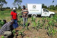 KENYA, County Bungoma, Mabanga, agricultural training institute, maize field, mobile soil testing lab / KENIA, landwirtschaftliches Traningszentrum, Maisfeld, mobiles Bodentest und Analyse Labor