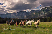 Wyoming Cowboys Cowboy and Cowgirl photographs of western ranches working with horses and cattle by western cowboy photographer Jess Lee. Photographing ranches big and small in Wyoming,Montana,Idaho,Oregon,Colorado,Nevada,Arizona,Utah,New Mexico. Fine Art Limited Edition Photography Of American Cowboys and Cowgirls by Jess Lee