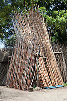 Zanzibar, Tanzania.  Mangrove Poles for Sale.  Used for scaffolding or other construction.  Historically these were transported back to the Persian Gulf in dhows where they were used as ceiling supports in the traditional houses common until the early 20th. century.