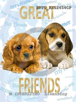 Alfredo, ANIMALS, dogs, photos+++++,BRTOXX02454CP,#a# Hunde, perros