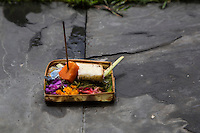 Bali, Indonesia.  An Offering (Canang) of Flower Petals, Papaya, and Bread Sits on the Edge of a Small Garden of a Local Home.  Ants have also found the offering.