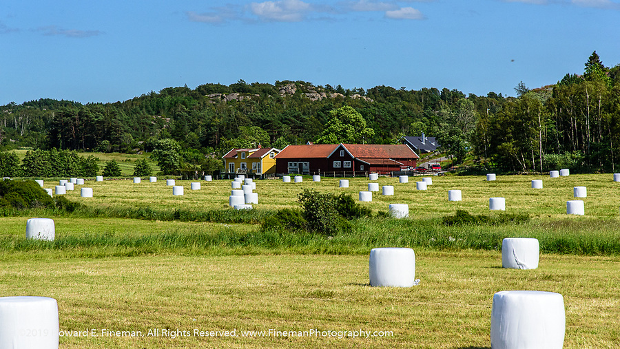Hay bales on farms near Tjorn Sweden