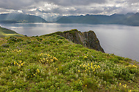 View of UnAlaska Bay from Amaknak Island, Dutch Harbor, Aleutian Islands, Alaska