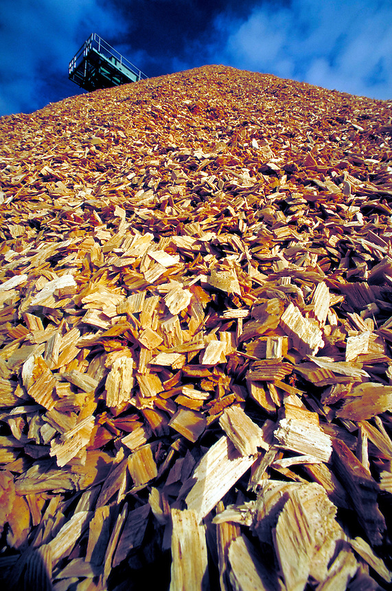 MOUNTAINOUS PILE OF LUMBER CHIPS. Alabama USA.
