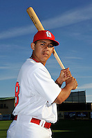 Mar 01, 2010; Jupiter, FL, USA; St. Louis Cardinals outfielder Jon Jay (68) during  photoday at Roger Dean Stadium. Mandatory Credit: Tomasso De Rosa/ Four Seam Images
