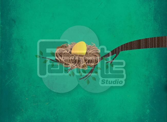 Illustrative image of golden egg in nest on branch representing investment