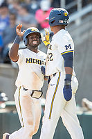 Michigan Wolverines second baseman Ako Thomas (4) celebrates with teammate Jordan Nwogu (42) during Game 11 of the NCAA College World Series against the Texas Tech Red Raiders on June 21, 2019 at TD Ameritrade Park in Omaha, Nebraska. Michigan defeated Texas Tech 15-3 and is headed to the CWS Finals. (Andrew Woolley/Four Seam Images)