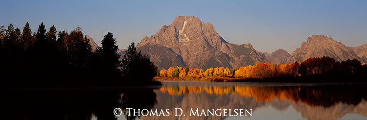 Mount Moran and the changing colors of the aspen trees  reflect in the Snake River at Oxbow Bend in Grand Teton National Park, Wyoming.