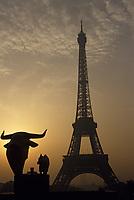 Europe/France/Ile-de-France/75007/Paris: La Tour Eiffel à l'aube depuis les jardins du Trocadéro
