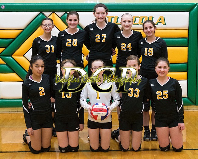February 2, 2017- Tuscola, IL- The 2017 Tuscola Hornet Volleyball 7th grade team. Standing from left are Carlie Seip, Amelia Bosch, Katie Dean, Sophie Kremitzki, and Kerri Pierce. Kneeling from left are Alondra Tapia, Maddie Stahler, Kenzie Fornshell, Taylor Musgrave, and Abigail Pettry. [Photo: Douglas Cottle]