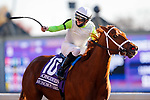 November 7, 2020 : Monomoy Girl, ridden by Florent Geroux, wins the Longines Distaff on Breeders' Cup Championship Saturday at Keeneland Race Course in Lexington, Kentucky on November 7, 2020. Carolyn Simancik/Breeders' Cup/Eclipse Sportswire/CSM