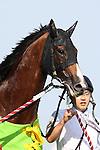 Showa Modern and jockey Hiroki Goto won the 60th running of the 1600m Yasuda Kinen