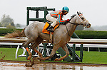 October 02, 2015:  Conquest  Big E and jockey Shaun Bridgmohan win the 3rd race, Maiden for 2 year old colts $56,000.  Candice Chavez/ESW/CSM