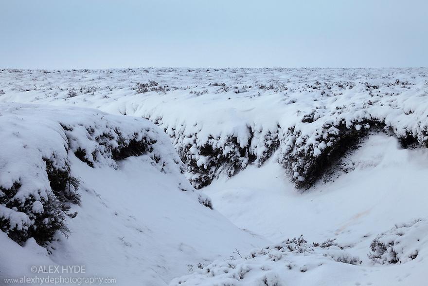 Heather moorland in winter, below Back Tor, Derwent Edge, Peak District National Park, UK. January.