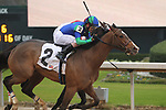 February 17, 2020: Go Google Yourself (2) with jockey Brian Hernandez Jr. aboard during the Bayakoa Stakes at Oaklawn Racing Casino Resort in Hot Springs, Arkansas on Feburary 17, 2020. Justin Manning/Eclipse Sportswire/CSM