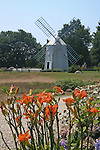 Windmill and lilies in Eastham, MA, New England, U.S.