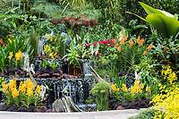 Singapore Botanic Garden, National Orchid Garden.