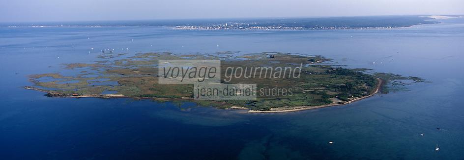 Europe/France/Aquitaine/33/Gironde: l'Ile aux oiseaux  -Vue aérienne