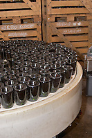 In the winery: bottles upside down in a machine that puts the neck in a salt solution that is several degrees below freezing sot that the wine in the neck will form an ice plug that can be removed with the yeast (disgorging), Champagne Larmandier-Bernier, Vertus, Cote des Blancs, Champagne, Marne, Ardennes, France