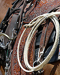 Saddle and lariat rope