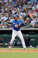 Jacob Hannemann - Chicago Cubs 2019 spring training (Bill Mitchell)