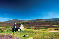 Ryvoan Bothy at the base of Meall a Bhuachaille, Abernethy Nature Reserve, Aviemore, Cairngorm National Park, Highland