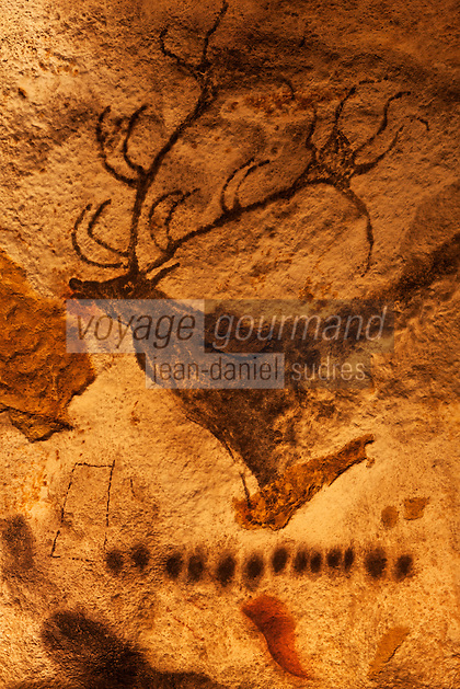 Europe/France/Aquitaine/24/Dordogne/Périgord Noir/Montignac: Grotte de Lascaux II - Grottes ornée  paléolithique - Cerf [Non destiné à un usage publicitaire - Not intended for an advertising use]