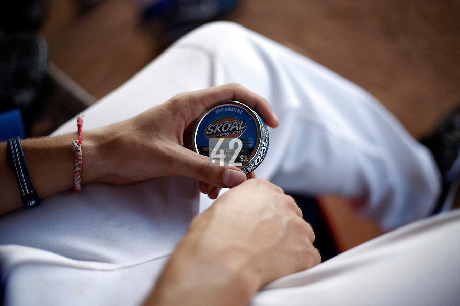 24 June 2011: Illustration of a photographic essay called Life in the dugout, during France 8-5 win over UCLA Alumni, at the 2011 Prague Baseball Week, in Prague, Czech Republic.