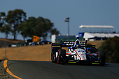 Verizon IndyCar Series<br /> GoPro Grand Prix of Sonoma<br /> Sonoma Raceway, Sonoma, CA USA<br /> Friday 15 September 2017<br /> Ed Jones, Dale Coyne Racing Honda<br /> World Copyright: Jake Galstad<br /> LAT Images