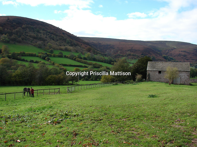 Llanthony, Wales - November 2, 2006:  A man visits a horse in a field.