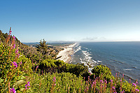 An overlooking summer view of Dunes National Park and the Florence, Oregon area.