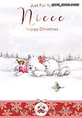 John, CHRISTMAS ANIMALS, WEIHNACHTEN TIERE, NAVIDAD ANIMALES, paintings+++++,GBHSSXC50-2102B,#xa#