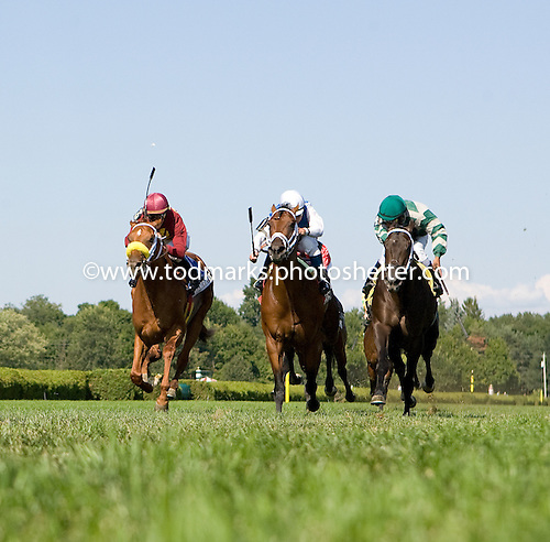 Interactif (center) defeats Grand Rapport (left) and Krypton in the Hall of Fame Stakes.