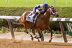 New York, NY - JULY 02: Off The Tracks, #2  with Jose Ortiz aboard wins the Grade 1 Mother Goose Stakes at Belmont Park on July 02, 2016, in Elmont, NY. (Photo by Sue Kawczynski/Eclipse Sportswire/Getty Images)