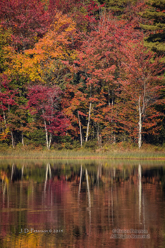 Reflections on Stocker Pond, New Hampshire