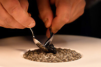 """Modena, 23 February 2017 – A chef prepares the """"Black and grey rice"""" dish at a lunch service at Osteria Francescana, Modena, Italy. Photo Sydney Low"""