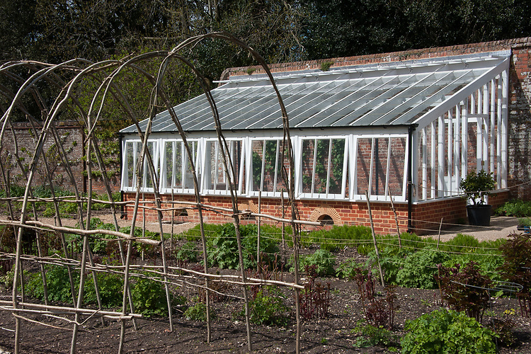 Hazel pole tunnel and greenhouse, Hinton Ampner, Hampshire, late April.