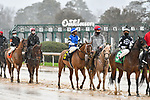February 28, 2021: Bye Bye J #6 , ridden by Ricardo Santana, Jr. in the Downthedustyroad Breeders Stakes for trainer Steven M. Asmussen at Oaklawn Park in Hot Springs,  Arkansas.  Ted McClenning/Eclipse Sportswire/CSM