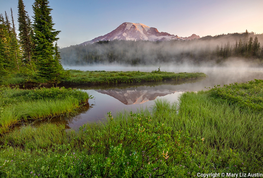 Mount Rainier National Park, WA: Dawn light on Mount Rainier with still reflection and mist rising at Reflection Lakes