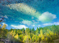 """""""ROCKY BOTTOM SKY""""<br /> <br /> A rocky mountain scene of aspen and cottonwoods in fall color mountains and forest azure skies and white billowy clouds as reflected in a mountain pond. ORIGINAL 24 X 36 GALLERY WRAPPED CANVAS SIGNED BY THE ARTIST $2,500. CONTACT FOR AVAILABILITY."""