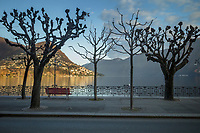 Switzerland. Canton Ticino. Lugano. Sunset at winter season. Trees with no leaves on the sidewalk.  Lake Lugano (or Ceresio Lake) is a glacial lake. Monte Brè (925 m)(L) is a small mountain east of Lugano with a view of the bay of Lugano and the Pennine Alps. Since 1912, the Monte Brè funicular has led from Lugano Cassarate to Monte Brè. 18.12.2020 © 2020 Didier Ruef