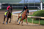 April 21, 2014 Chitu (right, front, with Joel Rosario) and Bayern (Rosie Napravnik) work 4F in company in :47.60 at Churchill Downs.  Both are trained by Bob Baffert.  Chitu is owned by the Tanma Corporation and Bayern's owner is Kaleem Shah.