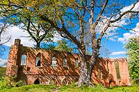 Kloster-Ruine Boitzenburg, Baustil Backsteingotik, Boitzenburger Land, Uckermark, Brandenburg, Deutschland