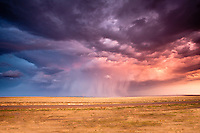 A thunderstorm w/ a rain shaft at sunset produces dramatic colors in Watrous, NM